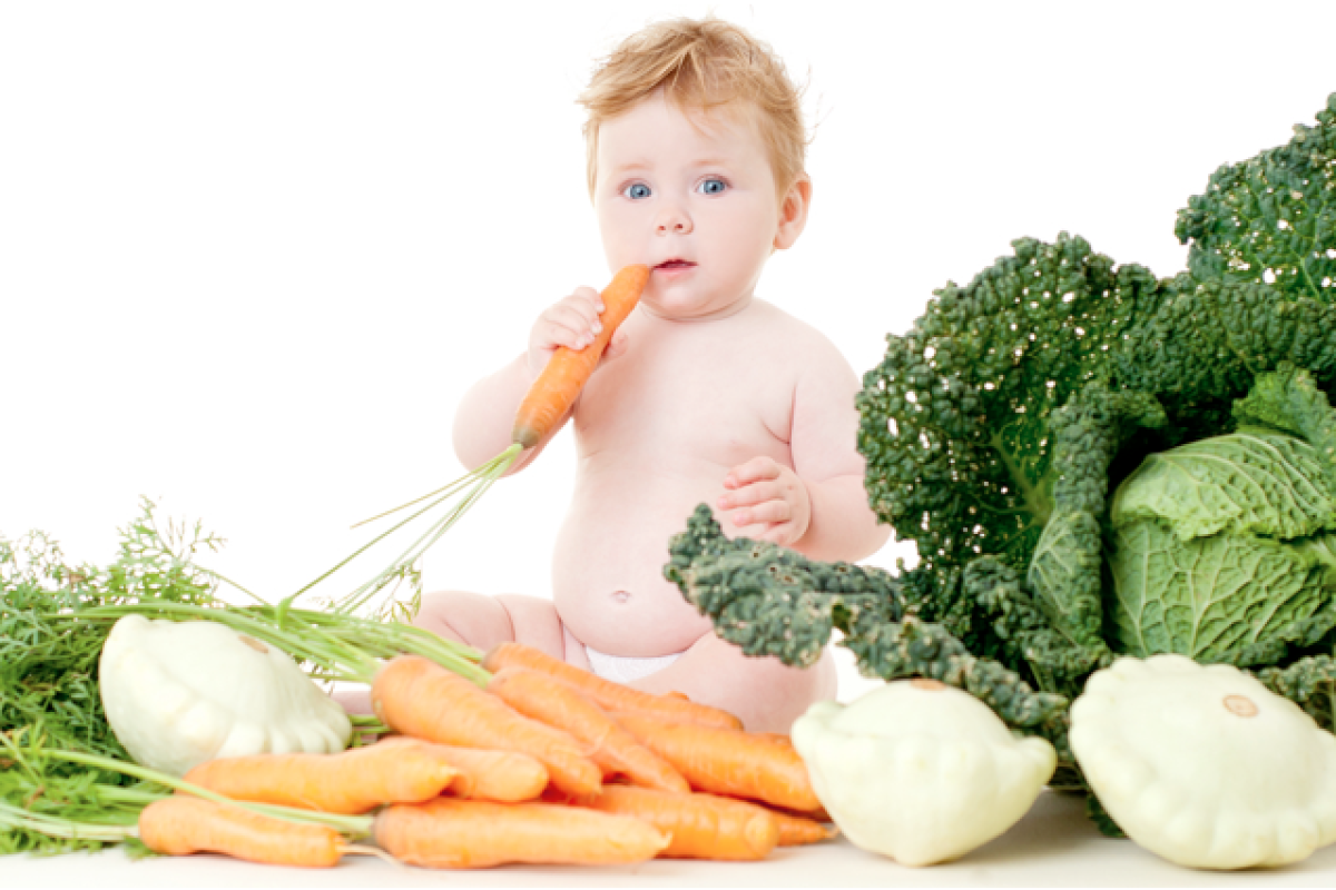 Primal Feeding Guide for Babies and Toddlers