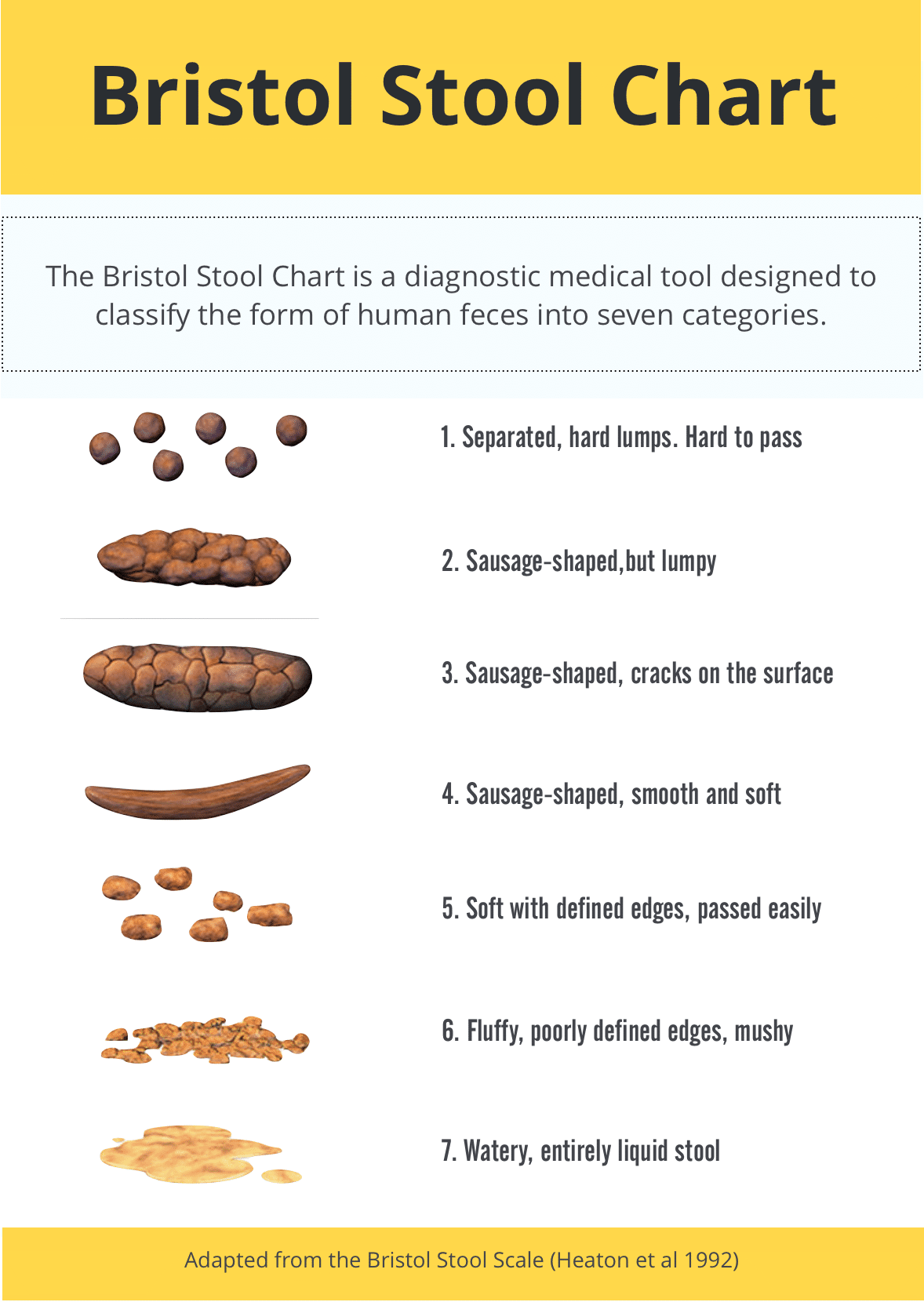 Bristol Stool Chart what is your paleo poop telling you