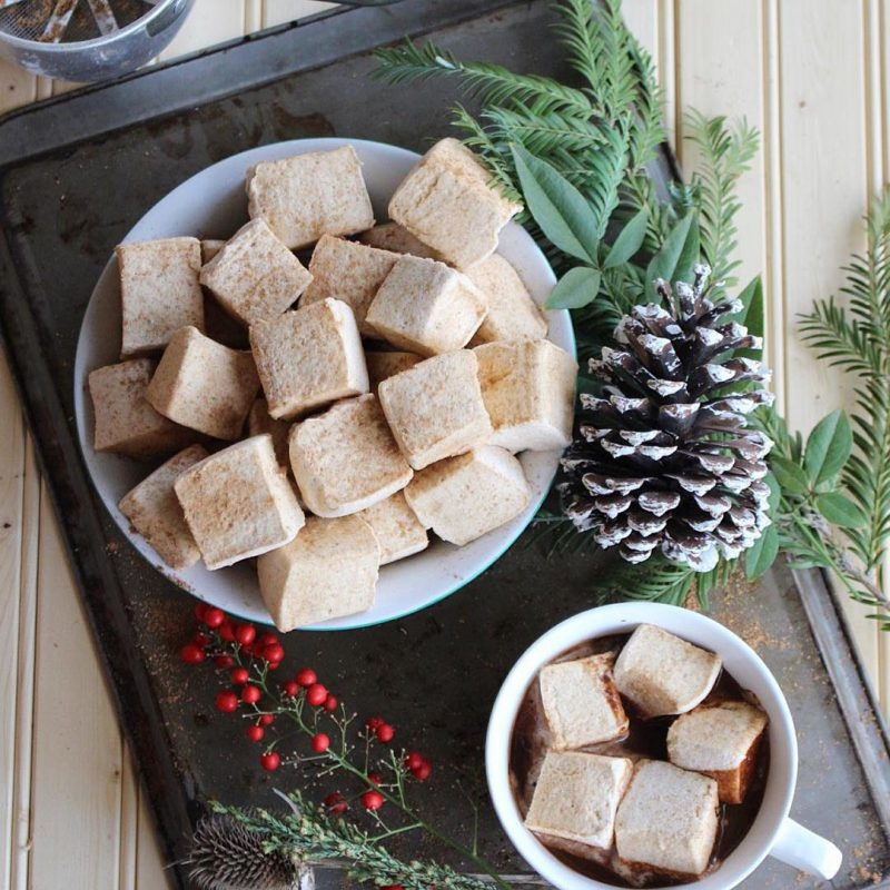 Paleo Paparazzi gingersnap marshmallows in cacoco certified paleo drinking chocolate