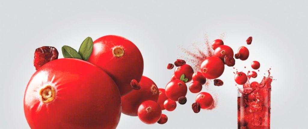 Atoka Certified Paleo Dried Cranberries