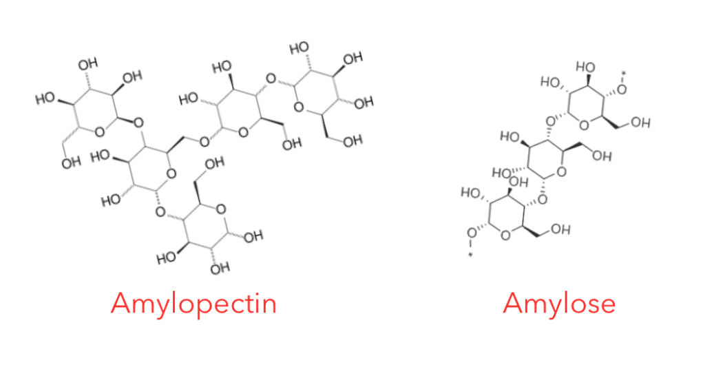 Amylose and Amylopectin molecules Chris Kresser