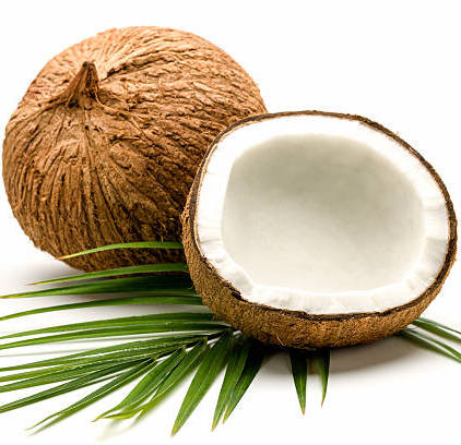 Stock Coconut - Bioriginal - Certified Paleo - Paleo Foundation
