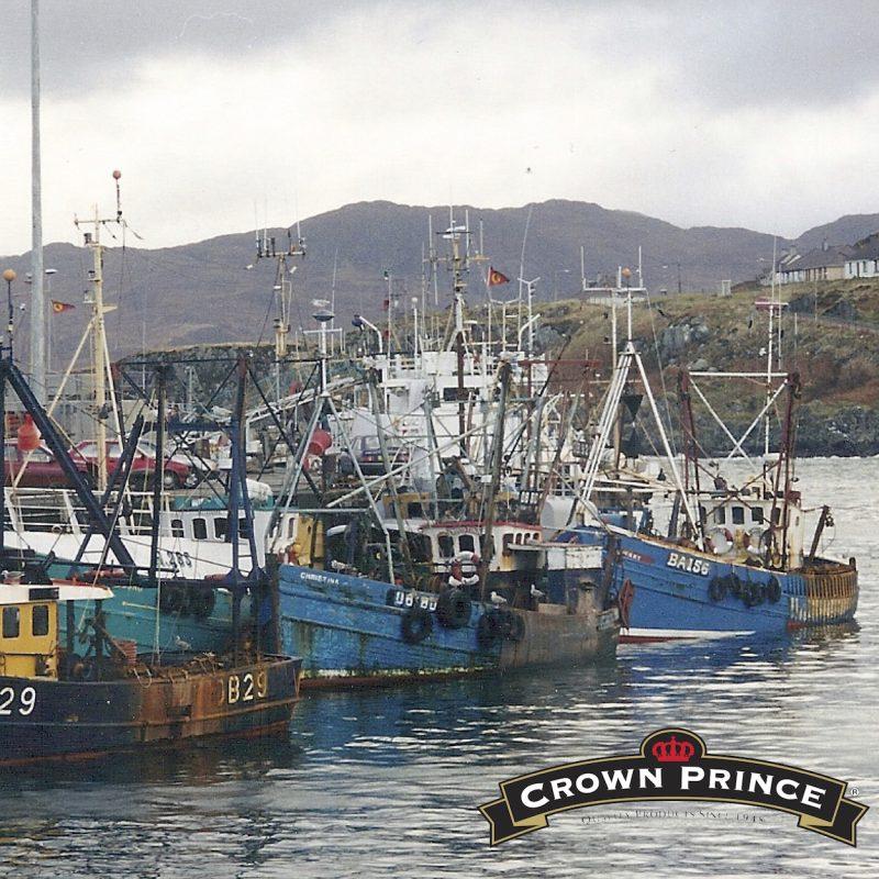 Boat & Logo - Crown Prince - Certified Paleo - Paleo Foundation