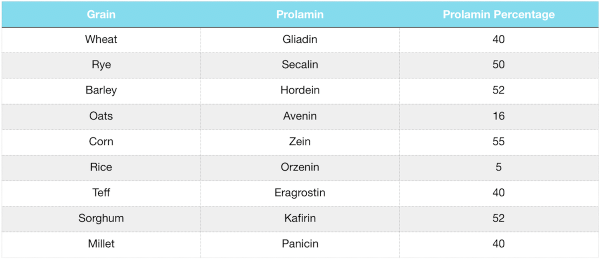 grains and pseudograins prolamin fraction