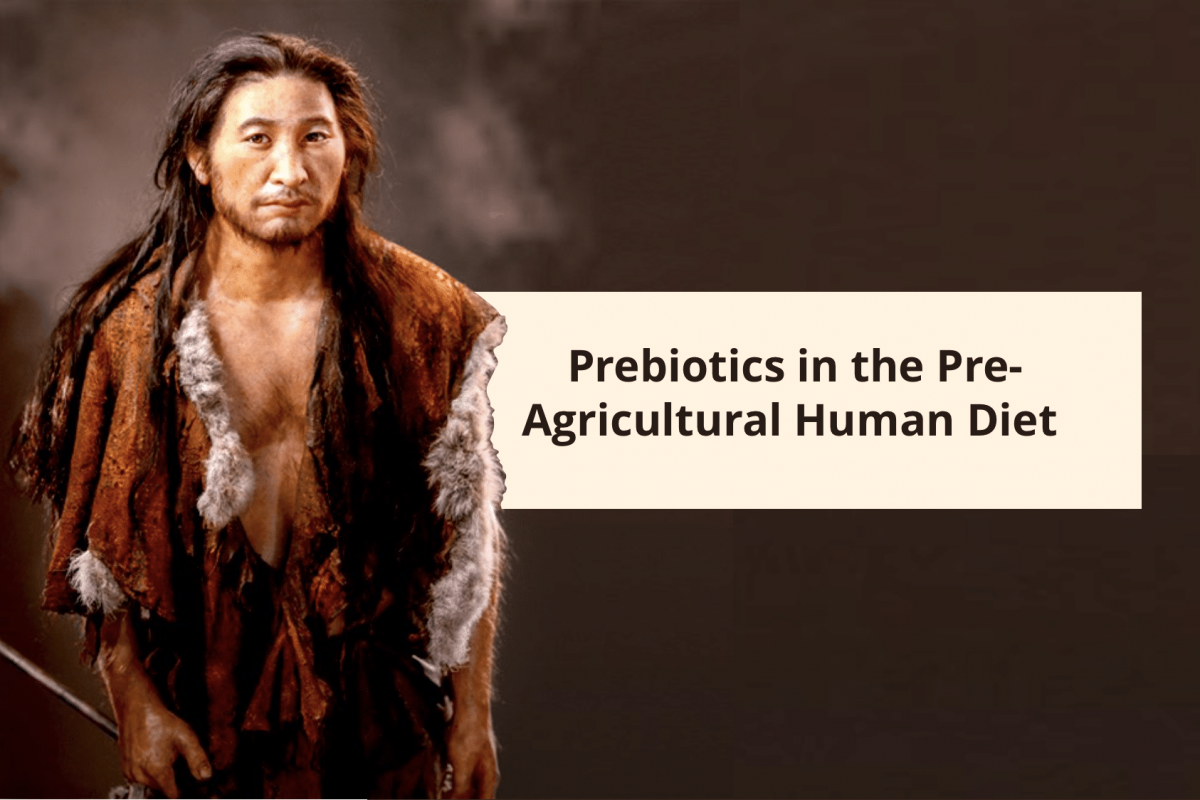 Coprolites Reveal Prebiotics in Pre-Agricultural Human Diet