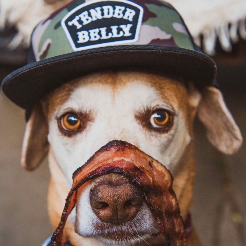 Good boy & No Sugar Dry-Rub Uncured Bacon - Tender Belly - Certified Paleo, KETO Certified - Paleo Foundation
