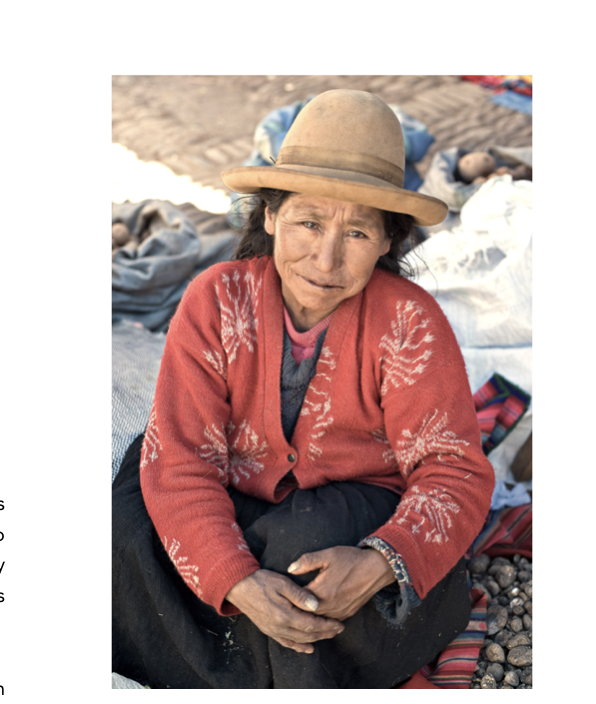 Elderly Aymara woman with wild potatoes.