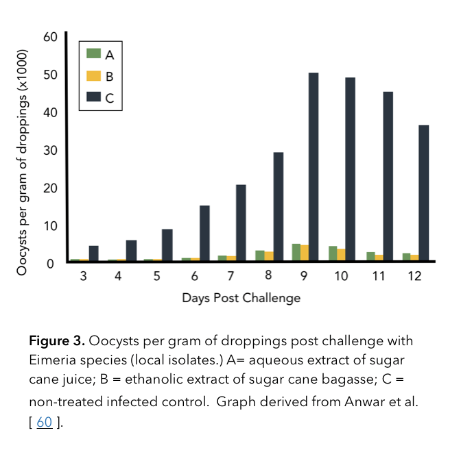 Oocysts per gram of droppings post challenge with Eimeria species (local isolates.) A= aqueous extract of sugar cane juice; B = ethanolic extract of sugar cane bagasse; C = non-treated infected control.