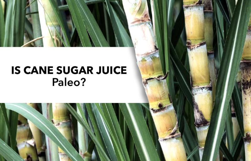 is cane sugar juice paleo?