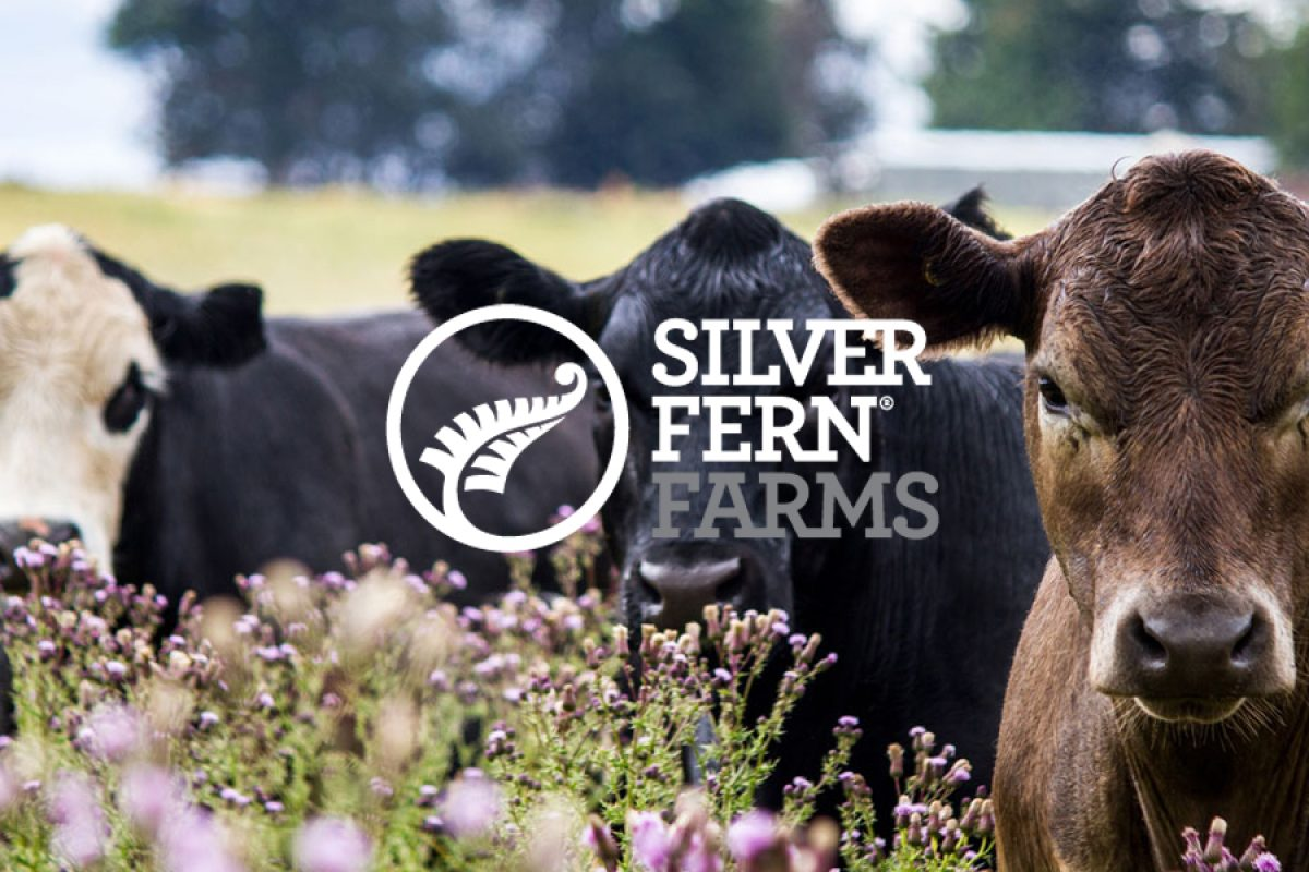 Silver Fern Farms: Bringing Grass-Fed Meat Products to the World