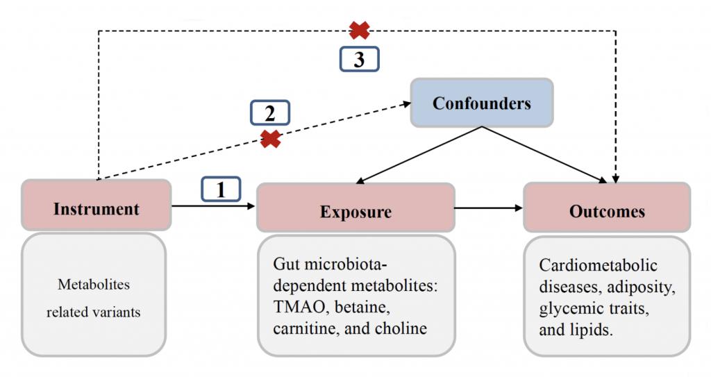 Assessment of Causal Direction Between Gut Microbiota-Dependent Metabolites and Cardiometabolic Health: Abi-Directional Mendelian Randomisation Analysis